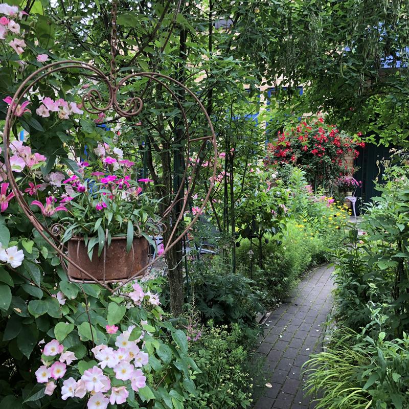 風に揺れるお花の庭園