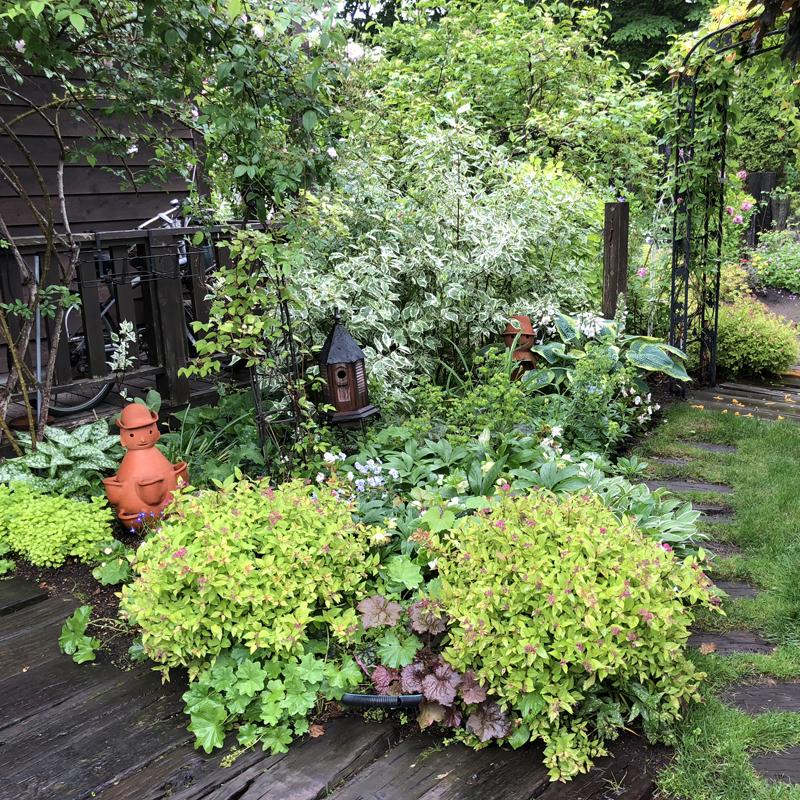 森のような庭園を