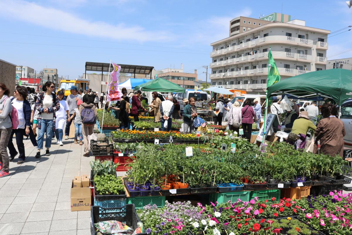 都市緑化振興事業