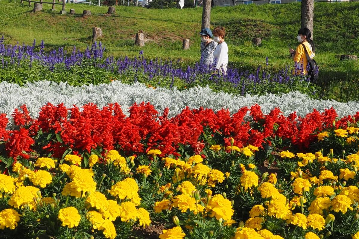 第15回花と緑の写真コンテスト受賞作品(令和2年度)