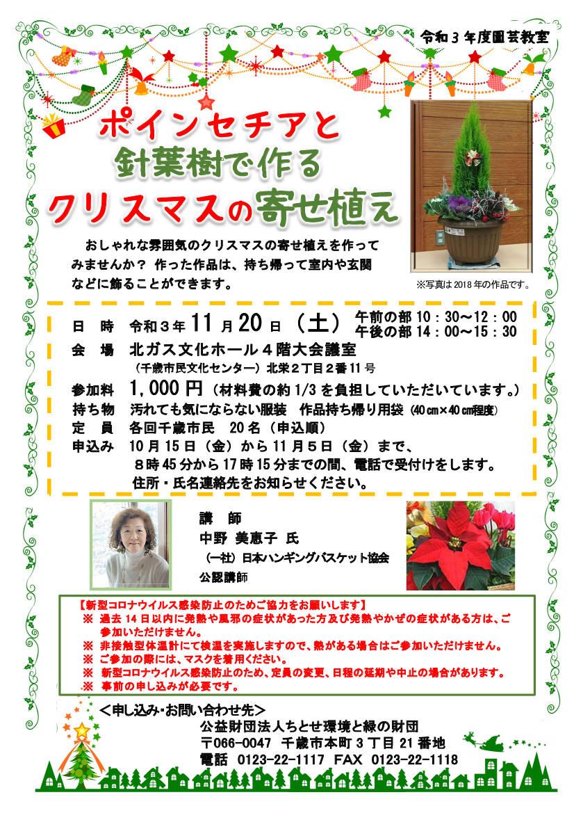 ポインセチアと針葉樹で作る、クリスマスの寄せ植えを開催します!